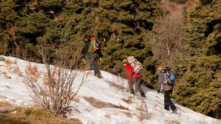 ouray: Annual Ice Climbing festival in Ouray, Colorado.