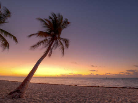 morning blue hour: Beautiful sunrise at Key West, Florida.