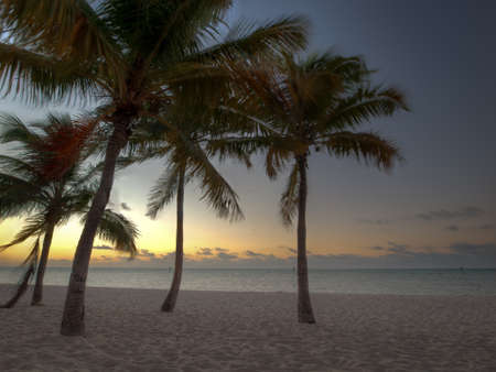 Beautiful sunrise at Key West, Florida. photo