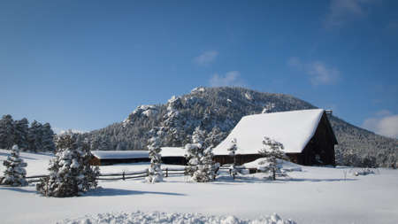Old barn after snow storm in Evergreen, Colorado. photo