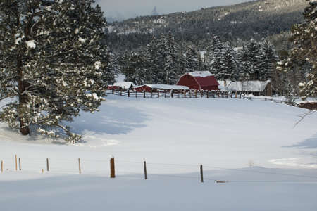 Old red barn after snow storm in Evergreen, Colorado. photo