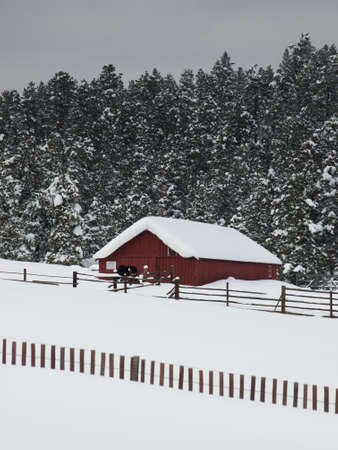 old red barn: Old red barn after snow storm in Evergreen, Colorado.