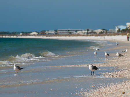 mexico beach: Beach houses at Mexico Beach, Florida. Stock Photo