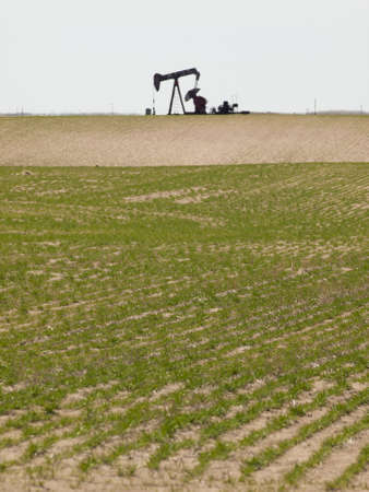 Oil pumpjack on agricultural field in Colorado. Stock Photo - 12924940