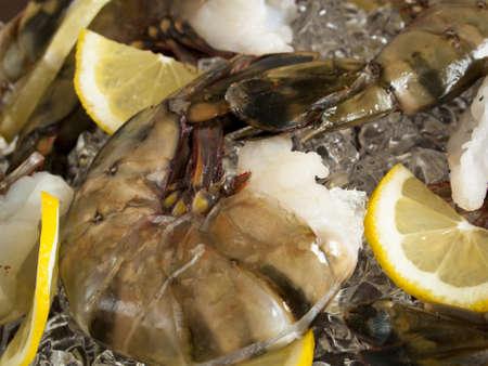 Raw shrimp with lemon wedges on white ice cubes. Stock Photo - 13603235