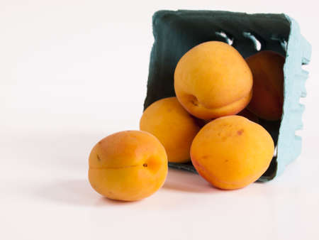The apricot fruit is a drupe similar to a small peach, from yellow to orange, often tinged red on the side most exposed to the sun; its surface can be smooth or velvety with very short hairs. The flesh is usually firm and not very juicy.Its taste can rang Stock Photo - 13699991