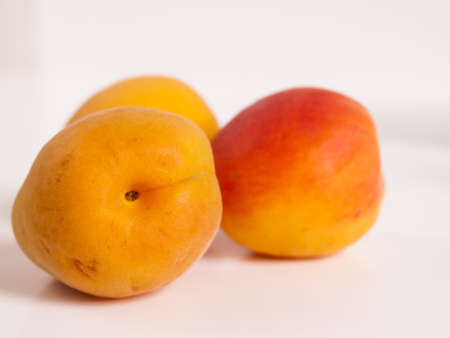 The apricot fruit is a drupe similar to a small peach, from yellow to orange, often tinged red on the side most exposed to the sun; its surface can be smooth or velvety with very short hairs. The flesh is usually firm and not very juicy.Its taste can rang Stock Photo - 13700008