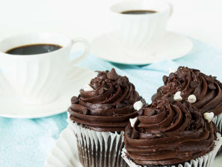 quadruple: Gourmet quadruple chocolate cupcakes on white plate. Stock Photo