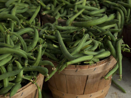 vegetus: Green beans peppers at the local farmers market.