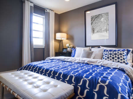 bedroom wall: Modern master bedroom with blue wall and white linens.