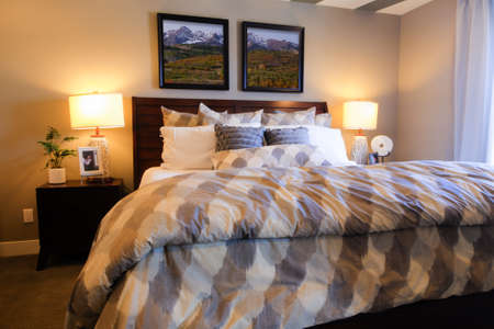 Modern master bedroom with large pictures and custom painted ceiling. Stock Photo - 15079370