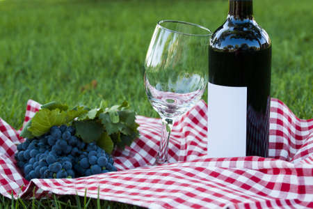 Picnic with red wine in the park.