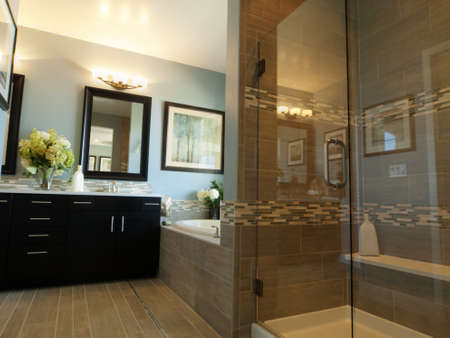bathroom mirror: Residential interior of modern house.