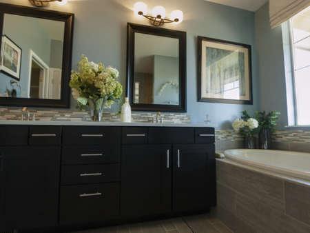 bathroom mirror: Residential interior of modern house.