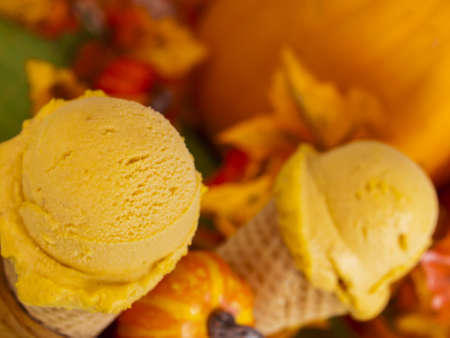 nonfat: Scoop of gourmet pumpkin gelato in waffle cones.