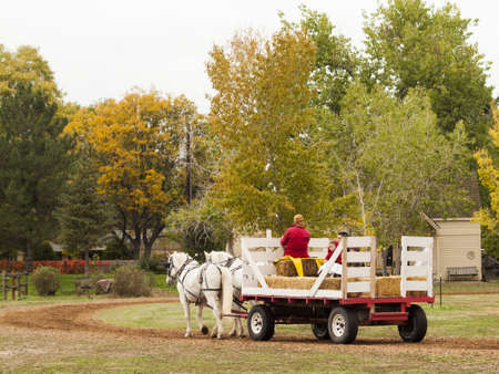Old traditional horse-drawn ride for kids. 2012 Pumpkin Harvest Festival at Four Mile Historic Park, Denver.