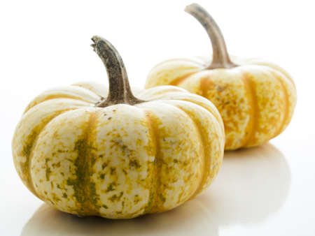vegetabilis: Small multi-color pumpkins on white background. Stock Photo