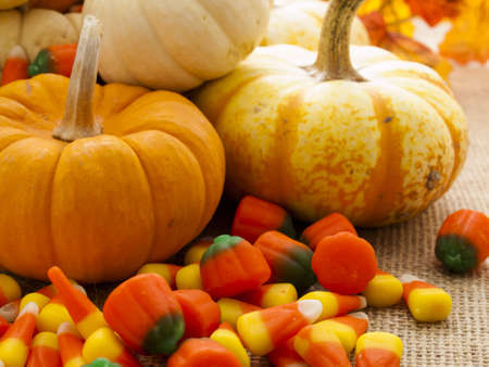 Small multi-color pumpkins and Halloween candies spilled from cornucopia. photo