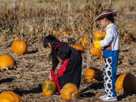 Sisters in Halloween costumes looking for big pumpkin on pumpkin patch. photo