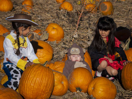Kids in Halloween costumes sitting between big pumpkins. photo