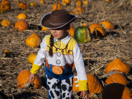 Little girl in Halloween costume looking for big pumpkin on pumpkin patch. photo