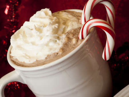 Hot cocoa with candy canes and few cookies.