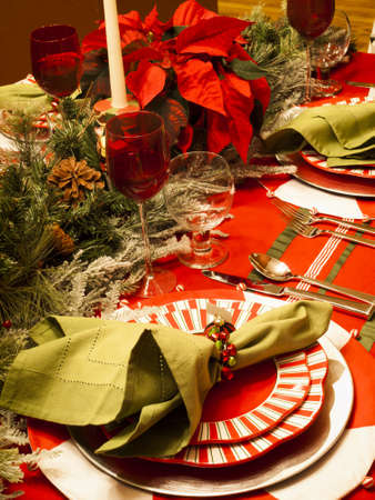 holiday meal: A table set for a holiday meal.