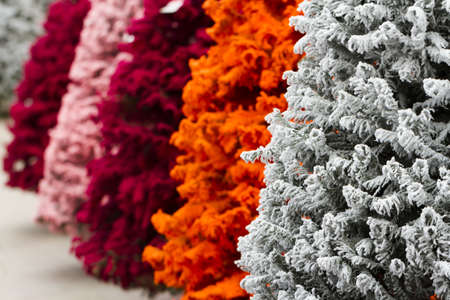 multi colors: Flocked Christmas Tree with multi colors. Stock Photo