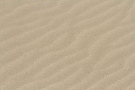 fine particles: Patterns in the sand on South Padre Island, TX.
