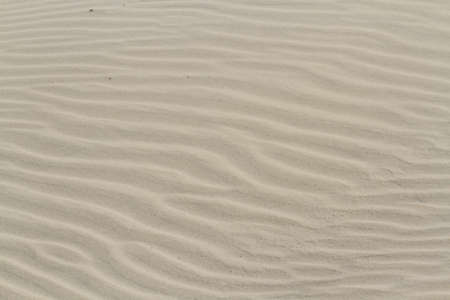 granula: Patterns in the sand on South Padre Island, TX.