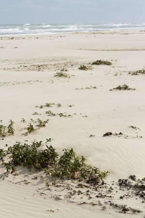 distanation: Beach Stock Photo