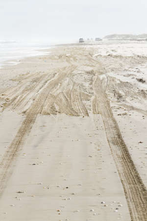 granula: Driving on the beach of South Padre Island, TX. Stock Photo