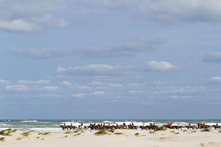 Horeback riding on the beach of South Padre Island, TX. Stock Photo - 17175310