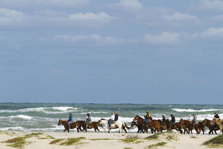 cameron county: Horeback riding on the beach of South Padre Island, TX. Editorial