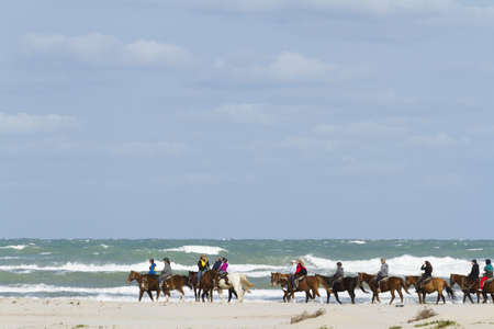 south padre island: Horeback riding on the beach of South Padre Island, TX. Editorial