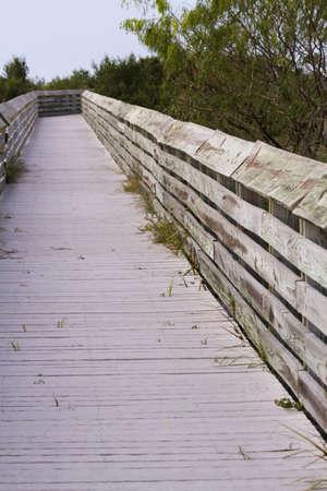 south padre: Board walk on South Padre Island, TX.