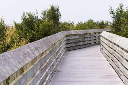 Board walk on South Padre Island, TX. photo