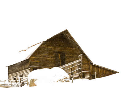 old barn in winter: Old barn located in the base village in the town of Steamboat Springs Colorado