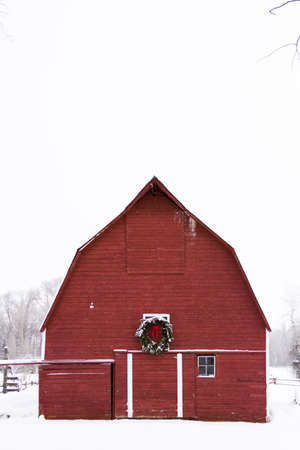 red barn: Red barn in snow on the farm in Colorado  Editorial