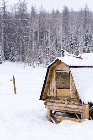 Chicken coop in snow on a small farm. photo