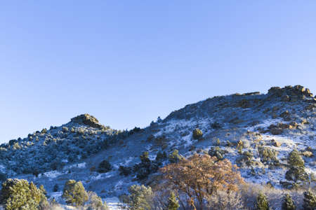 rocky mountain juniper: Garden of the gods after fresh snow fall. Stock Photo