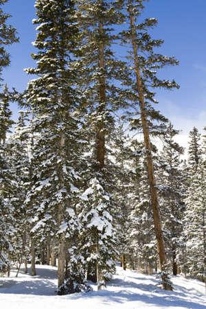 eisenhower: Loveland basin ski area in the Winter. Stock Photo
