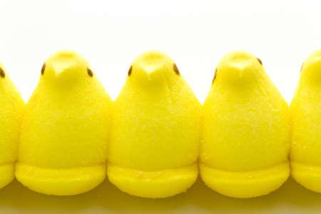 pasch: Marshmallow pulcini di Pasqua su uno sfondo bianco.