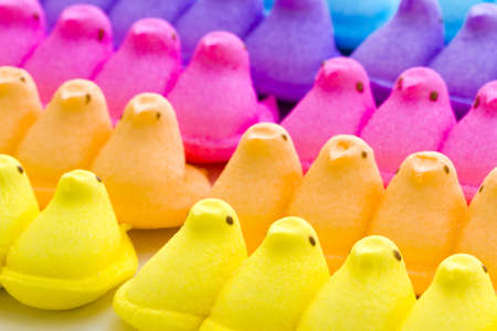 pasch: Marshmallow chicks for Easter on a white background.