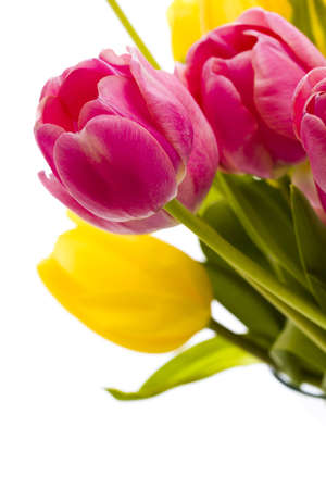 Yellow and pink tulips in spring bouquet. Imagens - 18721033
