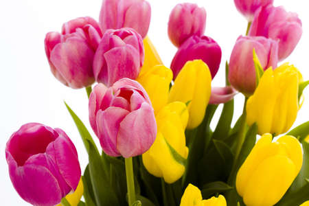 Yellow and pink tulips in spring bouquet. Imagens - 18721261