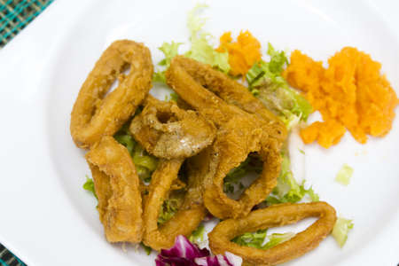 Squid rings served with a variety of lettuce and aromatic fruit dressing. Reklamní fotografie
