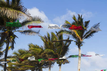 Coconut trees decorated for distanation wedding. photo