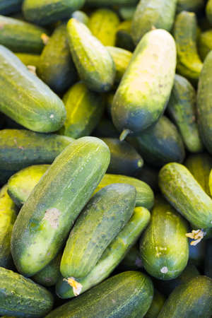 vegetus: Fresh produce at the local Farmers Market. Stock Photo