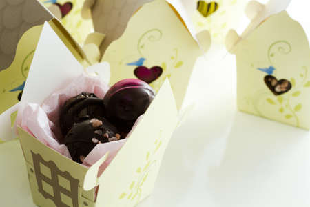 Miniature sweet bird houses favor boxes filled with gourmet truffles. photo
